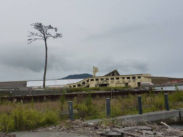 This is the (now) destroyed building. It's in the backg of kiseki no Ippon Matsu (miracle pine). Photo taken in 2012.